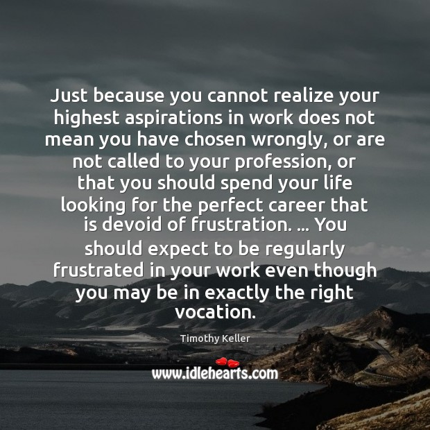 Just because you cannot realize your highest aspirations in work does not Image