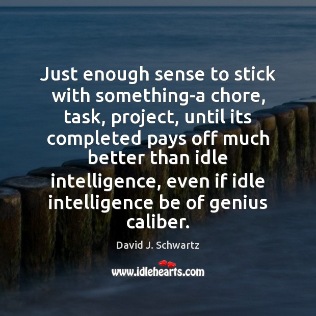 Just enough sense to stick with something-a chore, task, project, until its David J. Schwartz Picture Quote