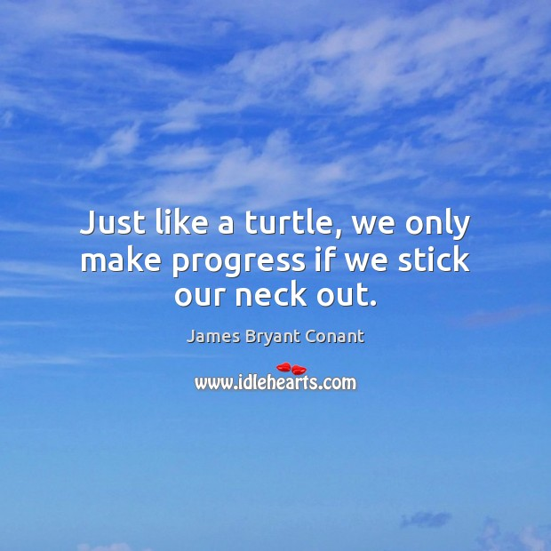 Image, Just like a turtle, we only make progress if we stick our neck out.