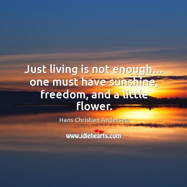 Image, Just living is not enough… one must have sunshine, freedom, and a little flower.