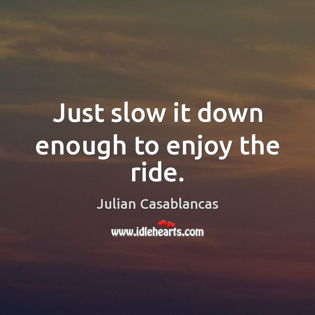 Just slow it down enough to enjoy the ride. Julian Casablancas Picture Quote