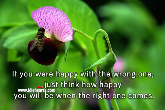 If You Were Happy With The Wrong One