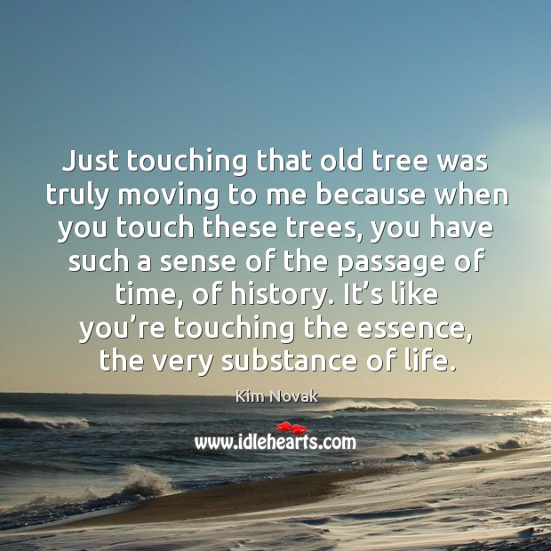 Just touching that old tree was truly moving to me because when you touch these trees Kim Novak Picture Quote