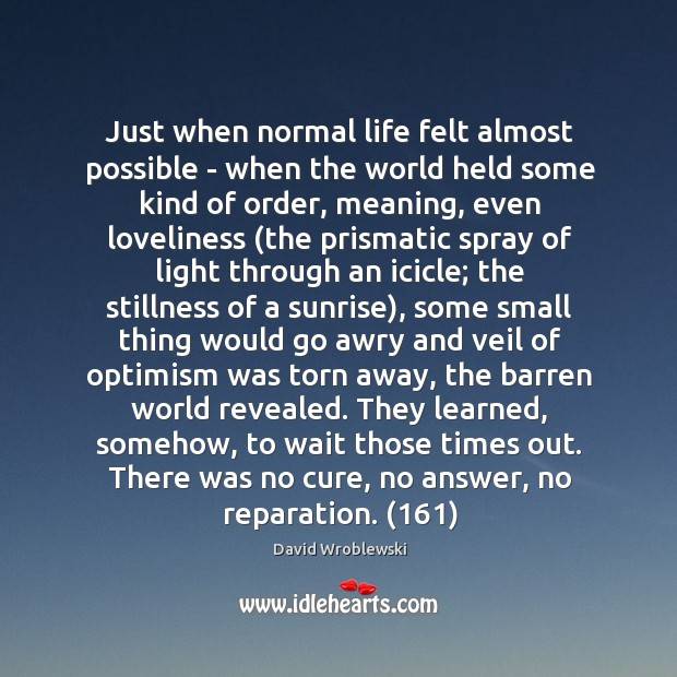 Just when normal life felt almost possible – when the world held Image