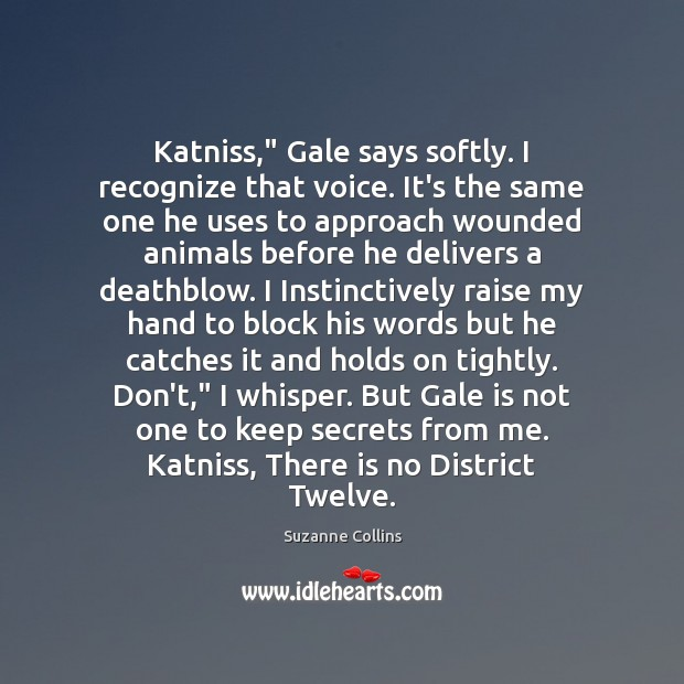 "Image, Katniss,"" Gale says softly. I recognize that voice. It's the same one"