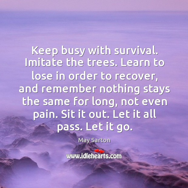 Keep busy with survival. Imitate the trees. Learn to lose in order Image