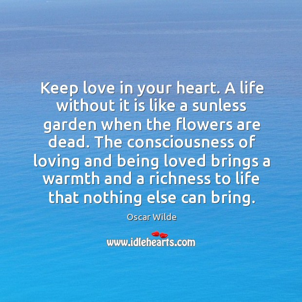 Picture Quotes About Life Without Love