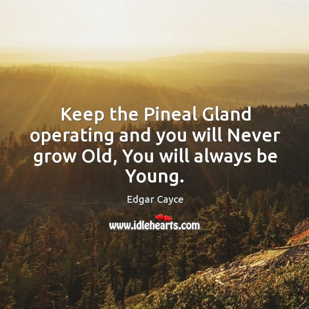 Keep the Pineal Gland operating and you will Never grow Old, You will always be Young. Image