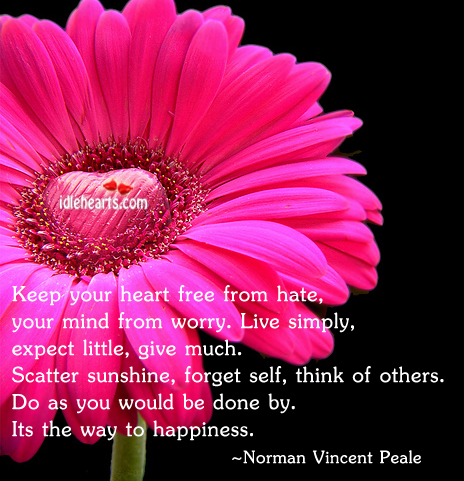 Keep Your Heart Free From Hate, Your Mind…