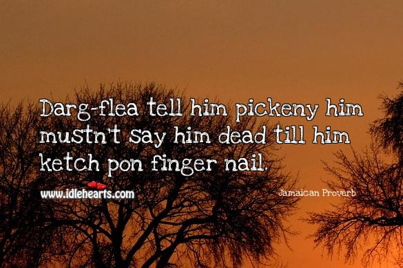 Darg-flea tell him pickeny him mustn't say him dead till him ketch pon finger nail. Jamaican Proverbs Image