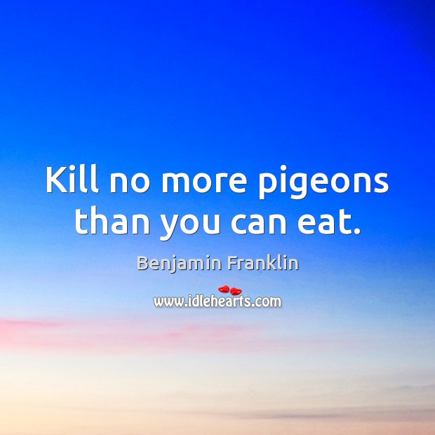Kill no more pigeons than you can eat. Image