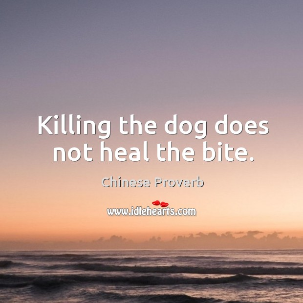 Image, Killing the dog does not heal the bite.