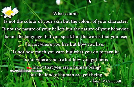 What counts is the kind of human you are Behavior Quotes Image