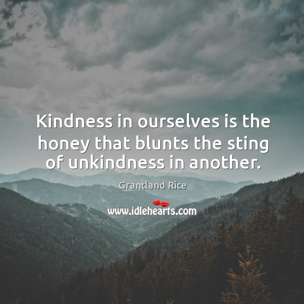 Kindness in ourselves is the honey that blunts the sting of unkindness in another. Image