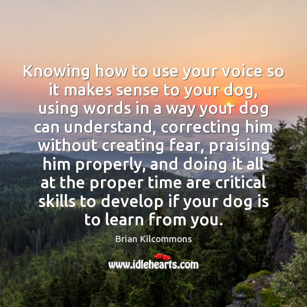 Image, Knowing how to use your voice so it makes sense to your