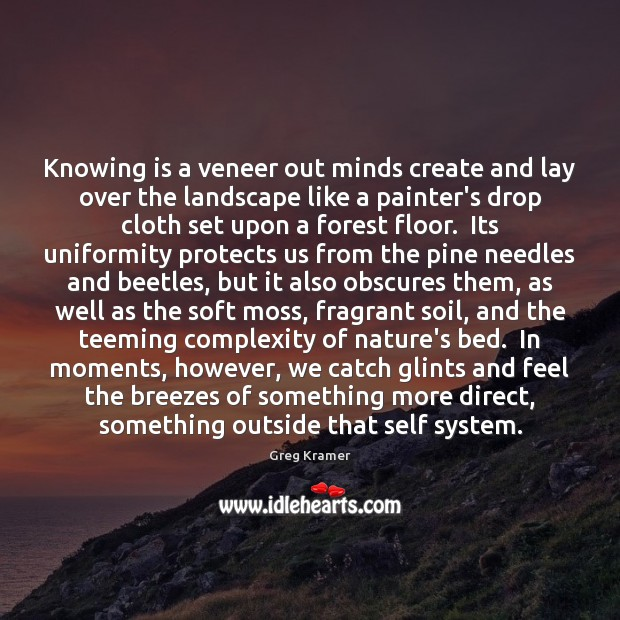 Knowing is a veneer out minds create and lay over the landscape Image