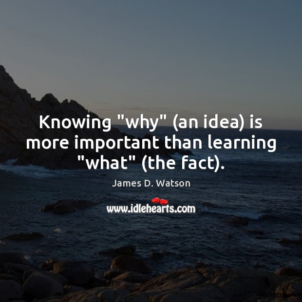 "Knowing ""why"" (an idea) is more important than learning ""what"" (the fact). James D. Watson Picture Quote"