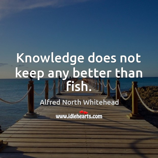 Knowledge does not keep any better than fish. Image