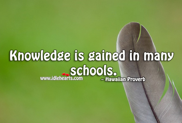 Knowledge is gained in many schools. Hawaiian Proverbs Image