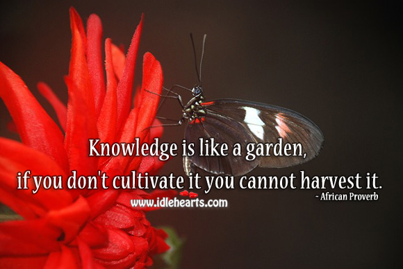 Image, Knowledge is like a garden, if you don't cultivate it you cannot harvest it.