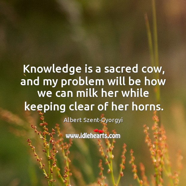 Knowledge is a sacred cow, and my problem will be how we Image