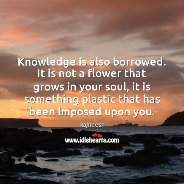 Image, Knowledge is also borrowed. It is not a flower that grows in