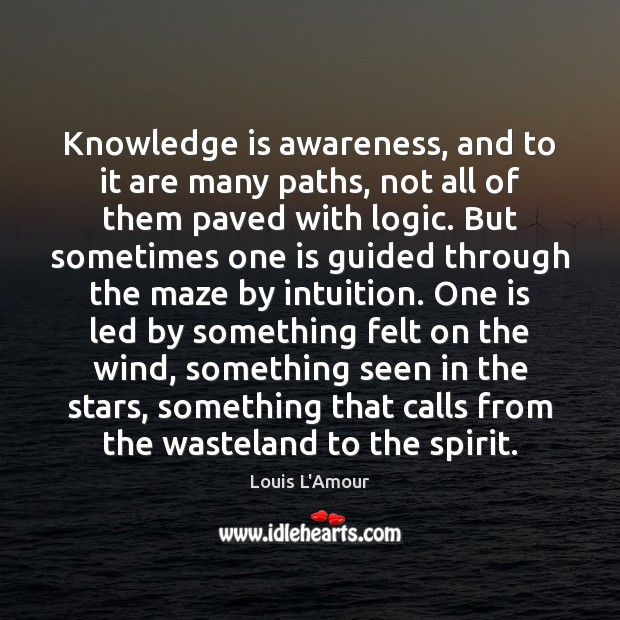 Knowledge is awareness, and to it are many paths, not all of Logic Quotes Image