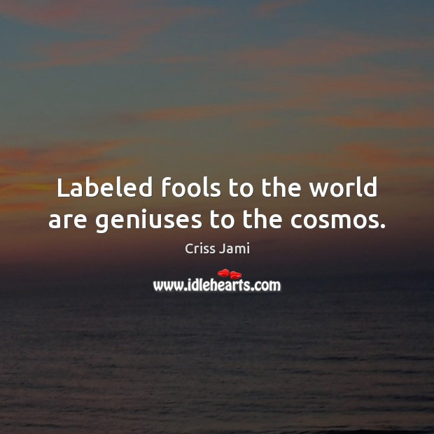 Labeled fools to the world are geniuses to the cosmos. Criss Jami Picture Quote