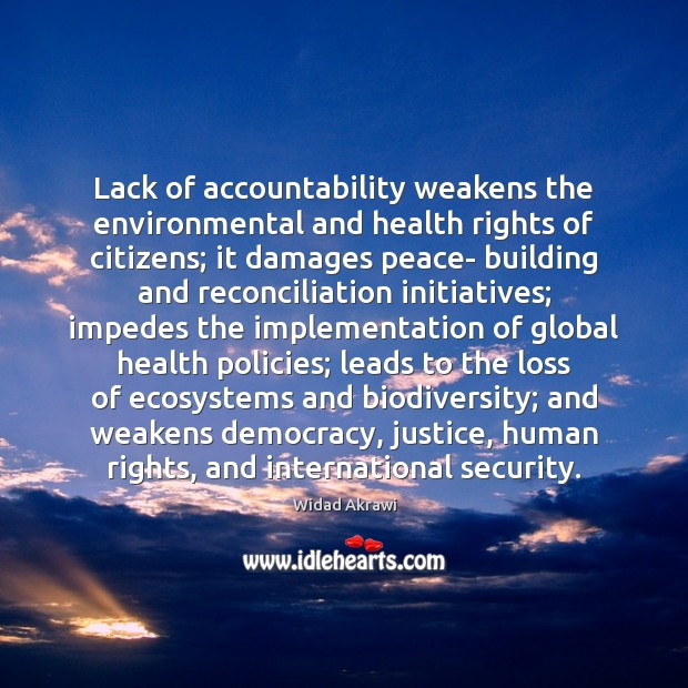 Lack of accountability weakens the environmental and health rights of citizens; it Widad Akrawi Picture Quote