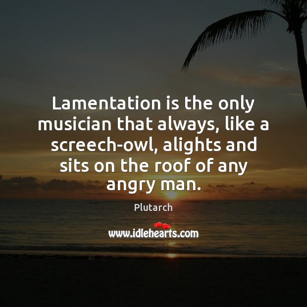 Lamentation is the only musician that always, like a screech-owl, alights and Plutarch Picture Quote