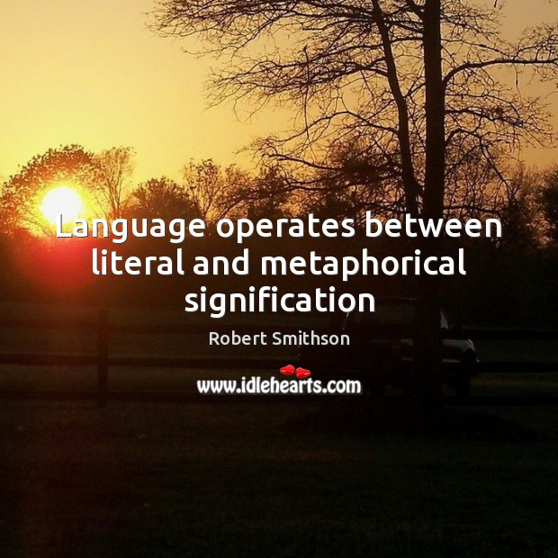 Language operates between literal and metaphorical signification Image