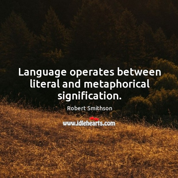 Language operates between literal and metaphorical signification. Image