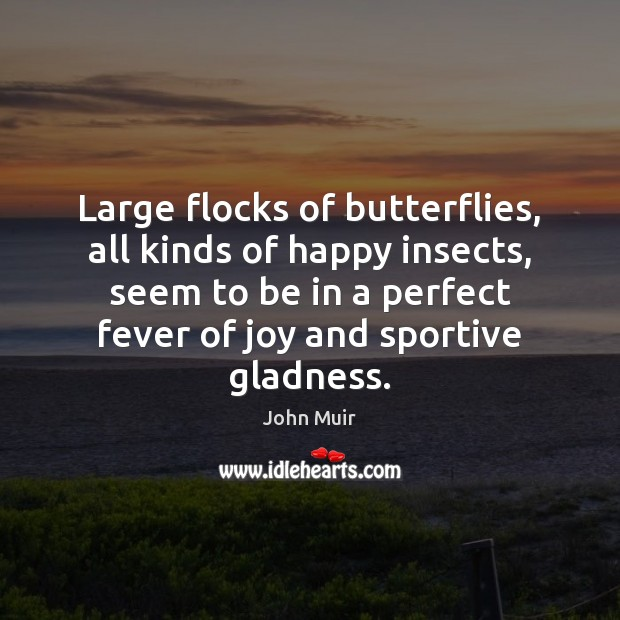 Large flocks of butterflies, all kinds of happy insects, seem to be John Muir Picture Quote