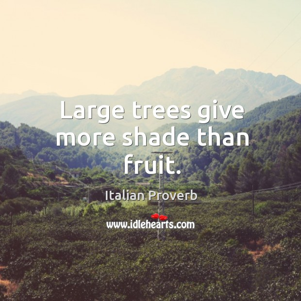 Image, Large trees give more shade than fruit.