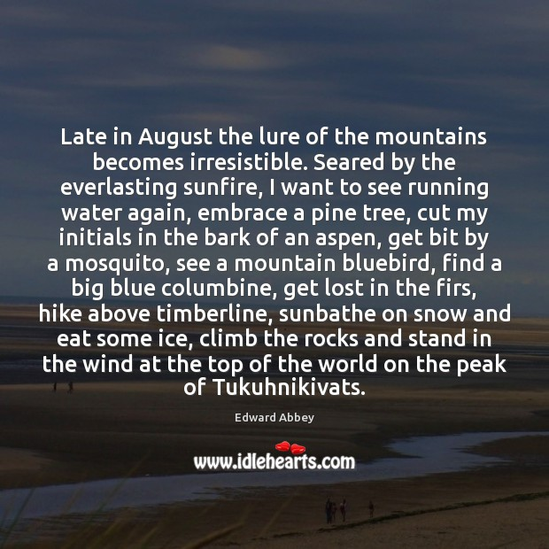 Late in August the lure of the mountains becomes irresistible. Seared by Image