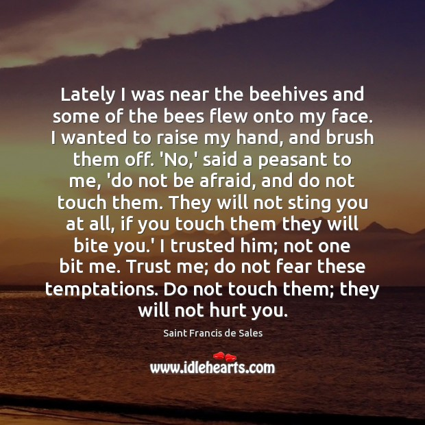 Lately I was near the beehives and some of the bees flew Saint Francis de Sales Picture Quote