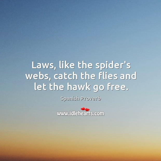 Image, Laws, like the spider's webs, catch the flies and let the hawk go free.