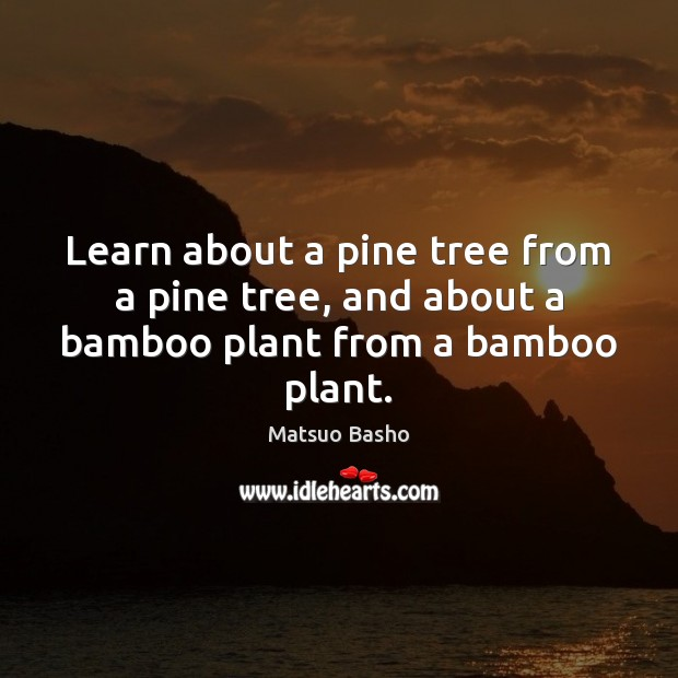 Learn about a pine tree from a pine tree, and about a bamboo plant from a bamboo plant. Matsuo Basho Picture Quote