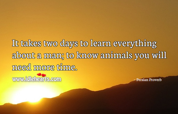 It takes two days to learn everything about a man; to know animals you will need more time. Persian Proverbs Image
