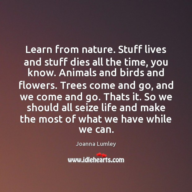 Learn from nature. Stuff lives and stuff dies all the time, you Image