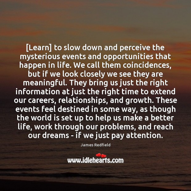 [Learn] to slow down and perceive the mysterious events and opportunities that James Redfield Picture Quote