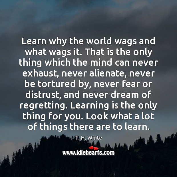 Learn why the world wags and what wags it. That is the Learning Quotes Image