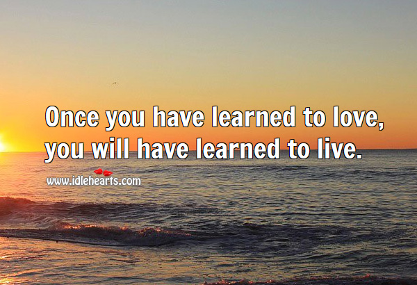 Image, Once you have learned to love