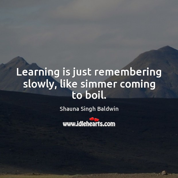 Learning is just remembering slowly, like simmer coming to boil. Learning Quotes Image