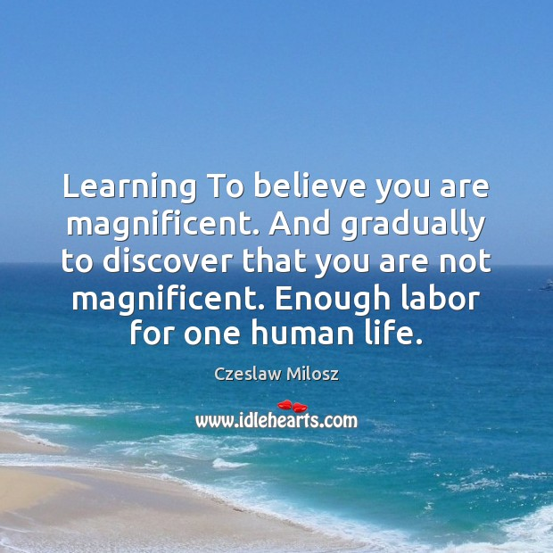 Learning To believe you are magnificent. And gradually to discover that you Czeslaw Milosz Picture Quote