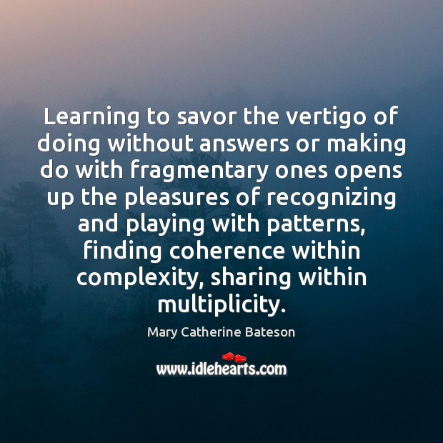 Learning to savor the vertigo of doing without answers or making do Image