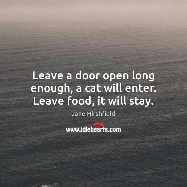 Image, Leave a door open long enough, a cat will enter. Leave food, it will stay.