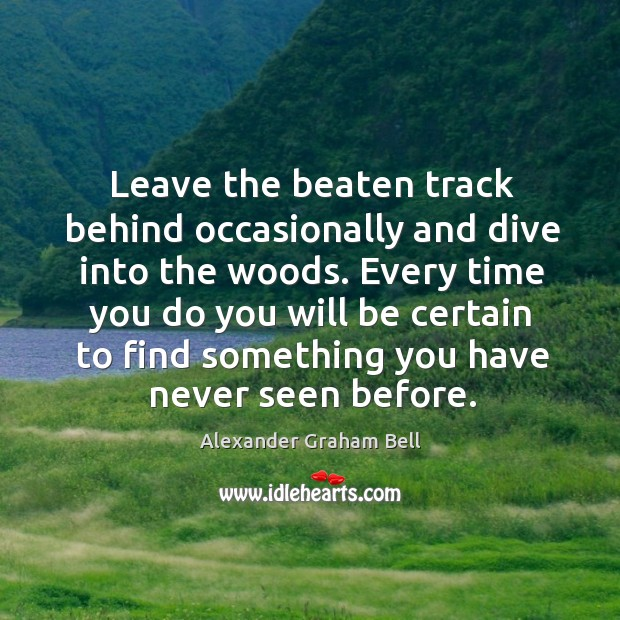 Leave the beaten track behind occasionally and dive into the woods. Every Image