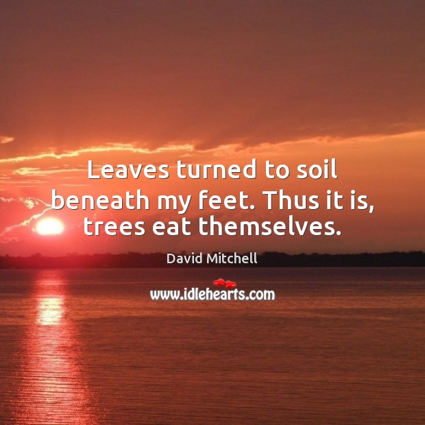 Leaves turned to soil beneath my feet. Thus it is, trees eat themselves. David Mitchell Picture Quote