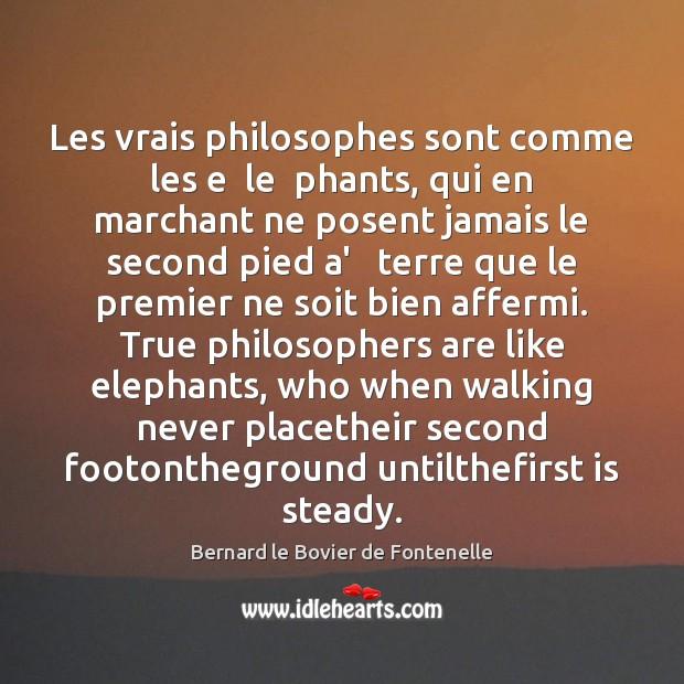Image, Les vrais philosophes sont comme les e  le  phants, qui en marchant